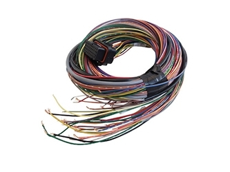 Link G4 ECU 'A' Loom - Medium