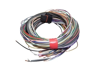 Link G4 ECU 'B' Loom - Medium
